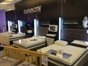 Mammoth Beds Leicester