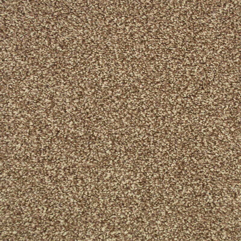 Light Brown Carpet - Brioche